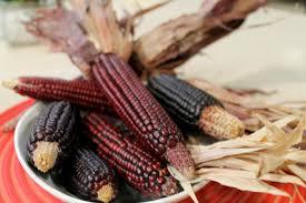 Zencho azteca o maíz fermentado